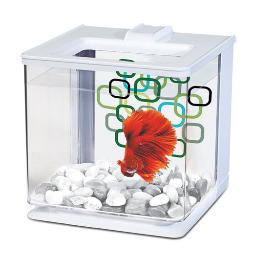 Premade tank kits alsip home nursery northwest for Cleaning betta fish tank